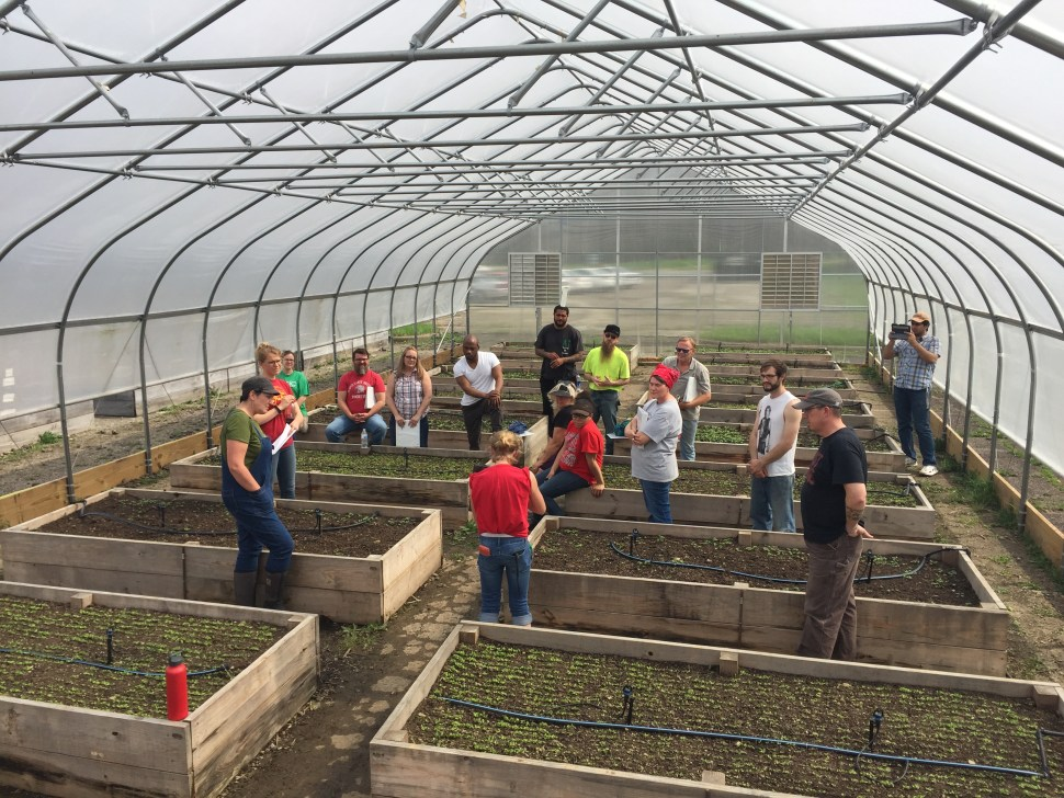 A group of people standing in a large, metal-framed greenhouse with planting boxes