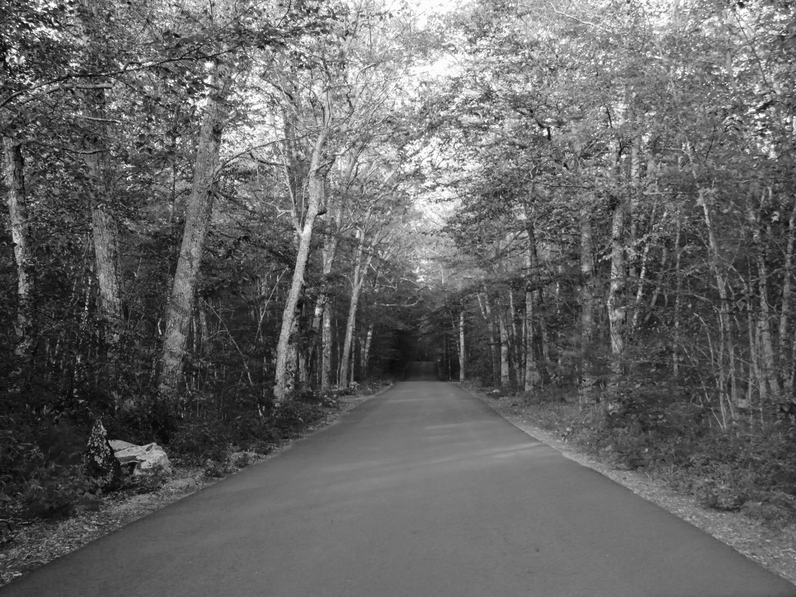 Hell Hollow Road, Connecticut