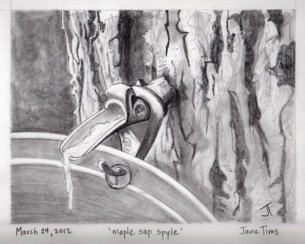'maple Sap Spyle'