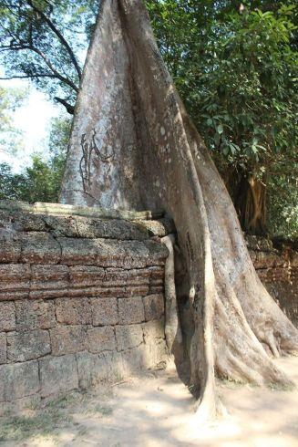 cambodia-taprohm2