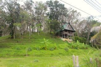 thai-southern-koyao6