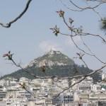 Lecabytus, Athens, Greece