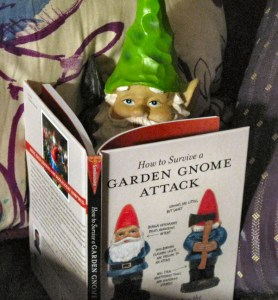 Gnome writing shocking expose.  Photo found on https://dittersdorfgnome.wordpress.com/tag/how-to-survive-a-garden-gnome-attack/