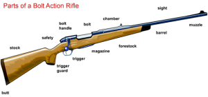 Bolt Action Rifle | From the blog of Nicholas C. Rossis, author of science fiction, the Pearseus epic fantasy series and children's book
