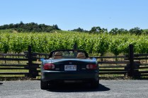 Day 13 - Sonoma Valley, CA