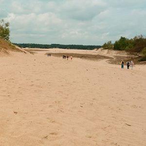 Dünenwanderung in #Nord-Brabant #Niederlande