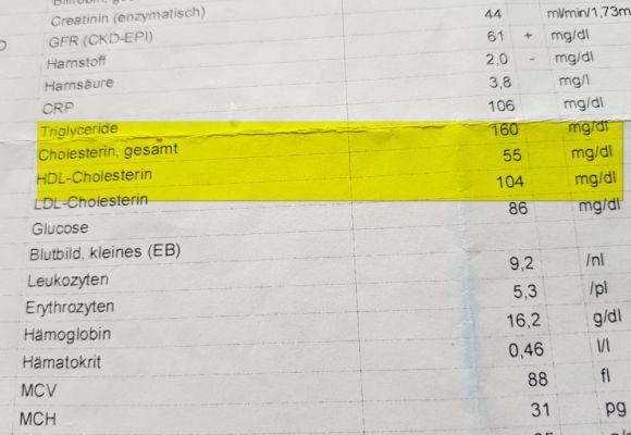 Die Lüge von der Cholesterin-Lüge