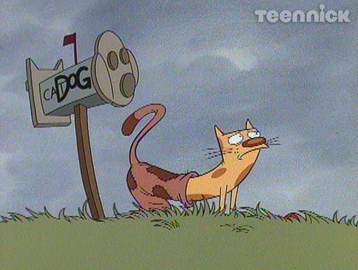 Image result for catdog dog gone