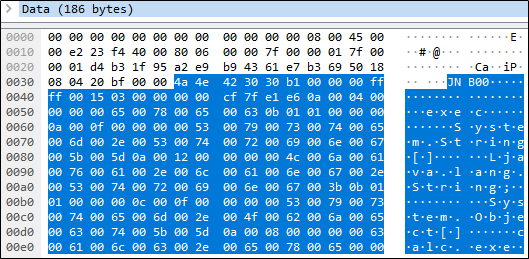 Hex dump of the packet that calls exec().