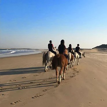 Enjoy beach horse riding while hunting in South Africa.