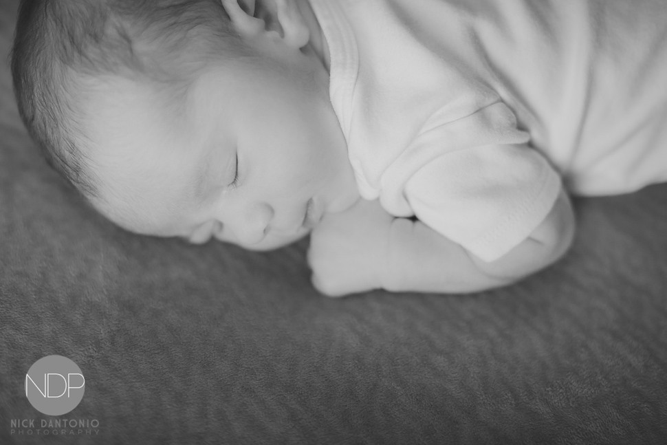 20-Buffalo Newborn Baby Photos-Blog_© NDP 2016