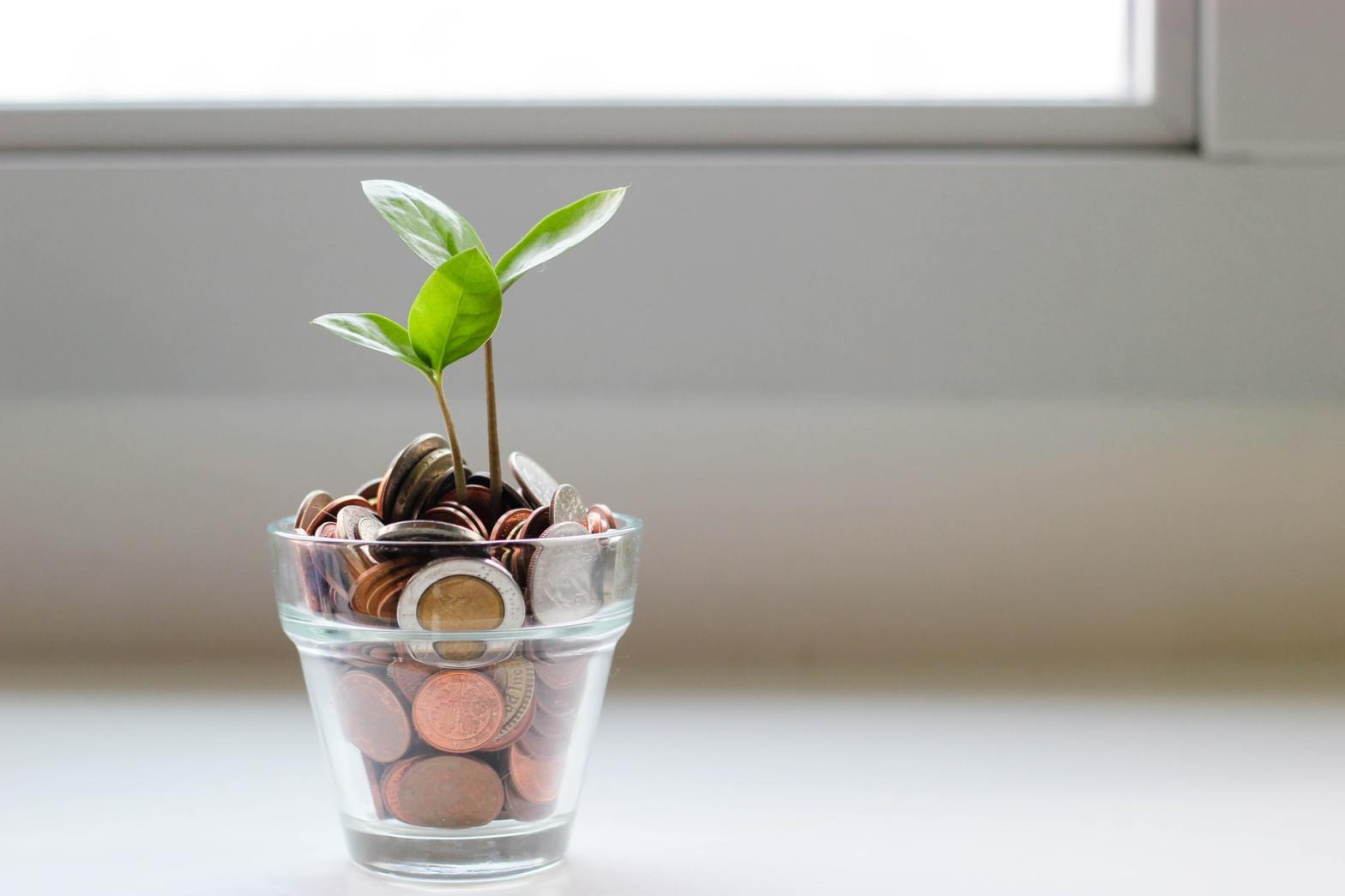 Main image for the blog post 5 ways minimalism improve your finances