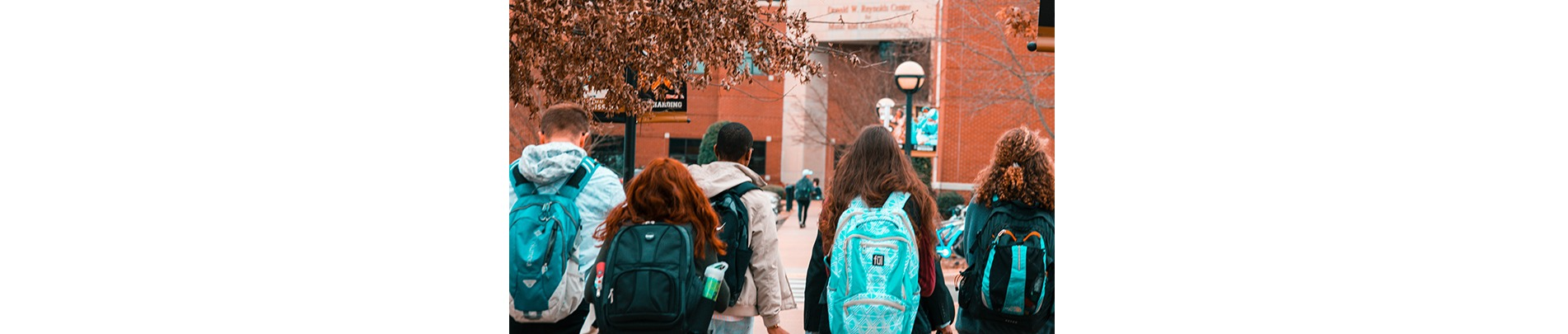 The Basics of Renting to Students