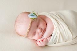 newborn baby girl wrapped in ivory with dainty blue head band in studio portrait taken by MN newborn photographer Nicki Joachim Photography Owatonna Minnesota