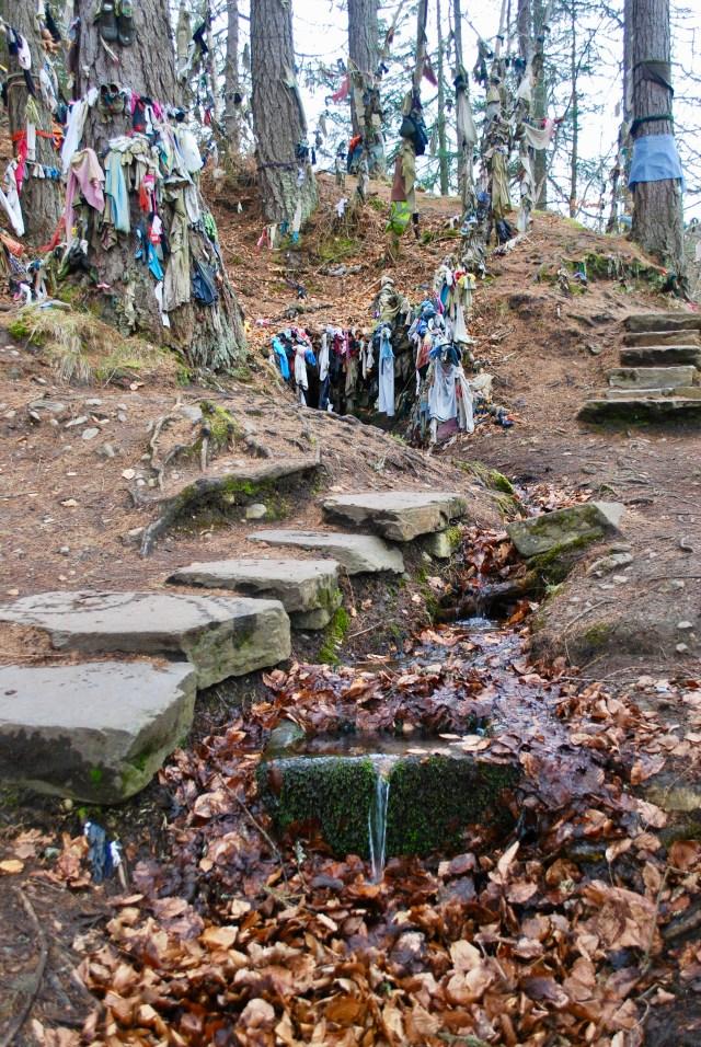The Clootie Well, Black Isle, Scotland
