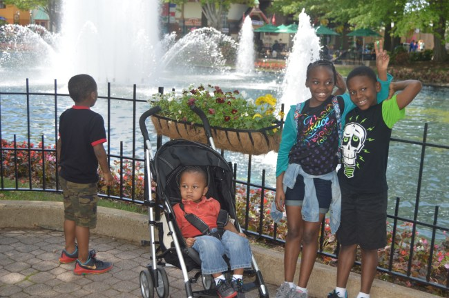 Kings Dominion Spring Bloom (10)