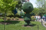 Kings Dominion Spring Bloom (20)