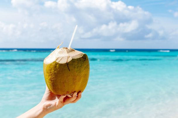 A Guide to Life in the Caribbean