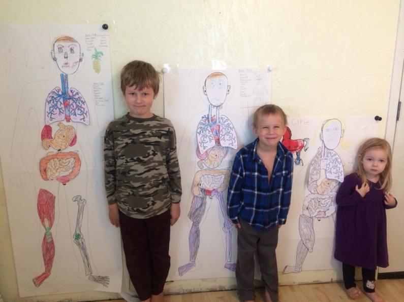 homeschooling - my human body