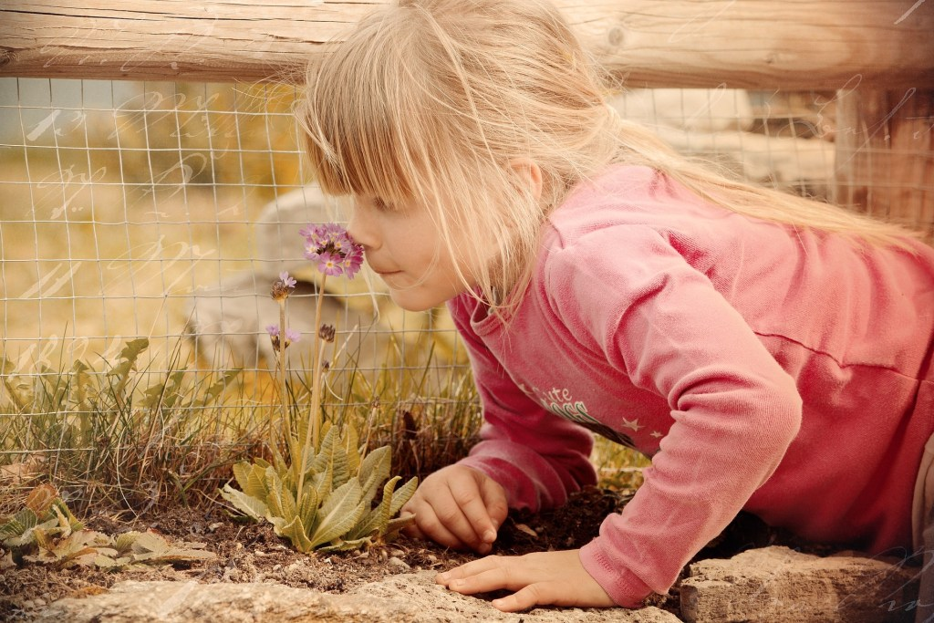 Sheltering children like tender plants