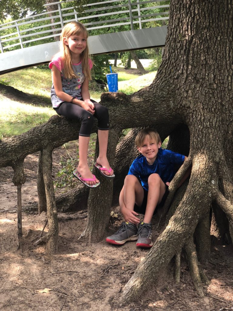 learn outside with trees