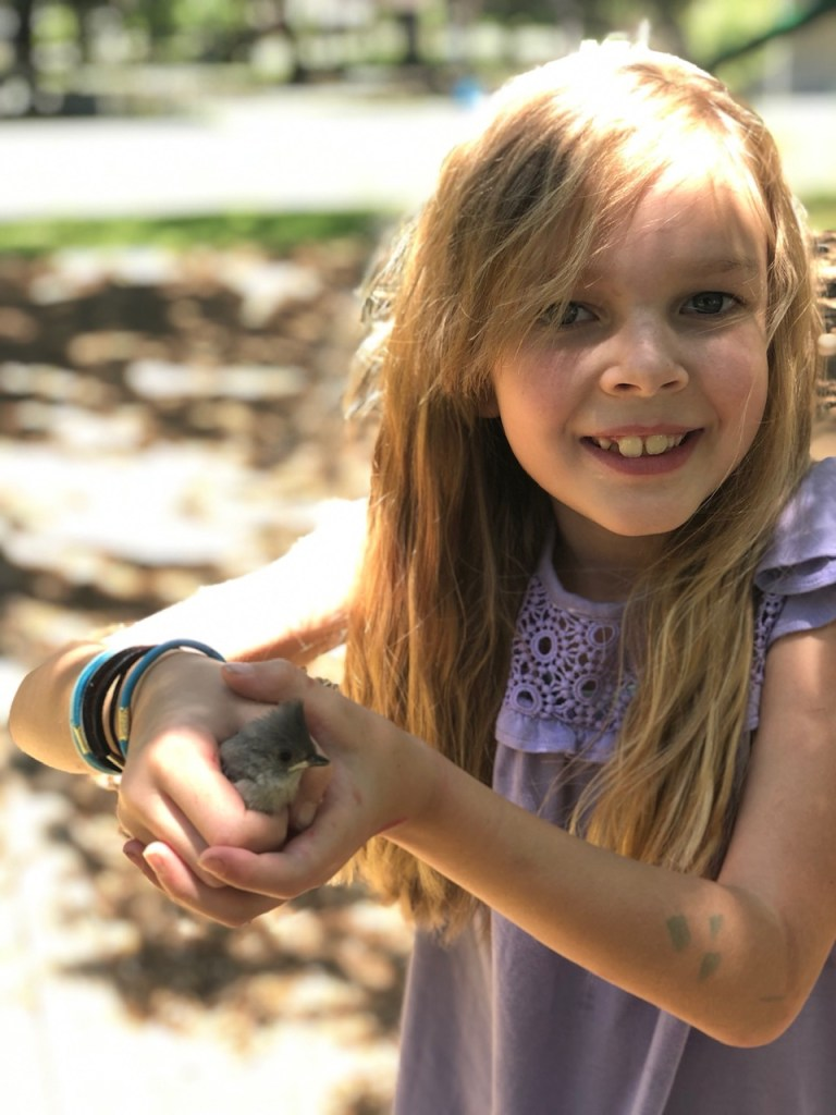 learn outside with birds