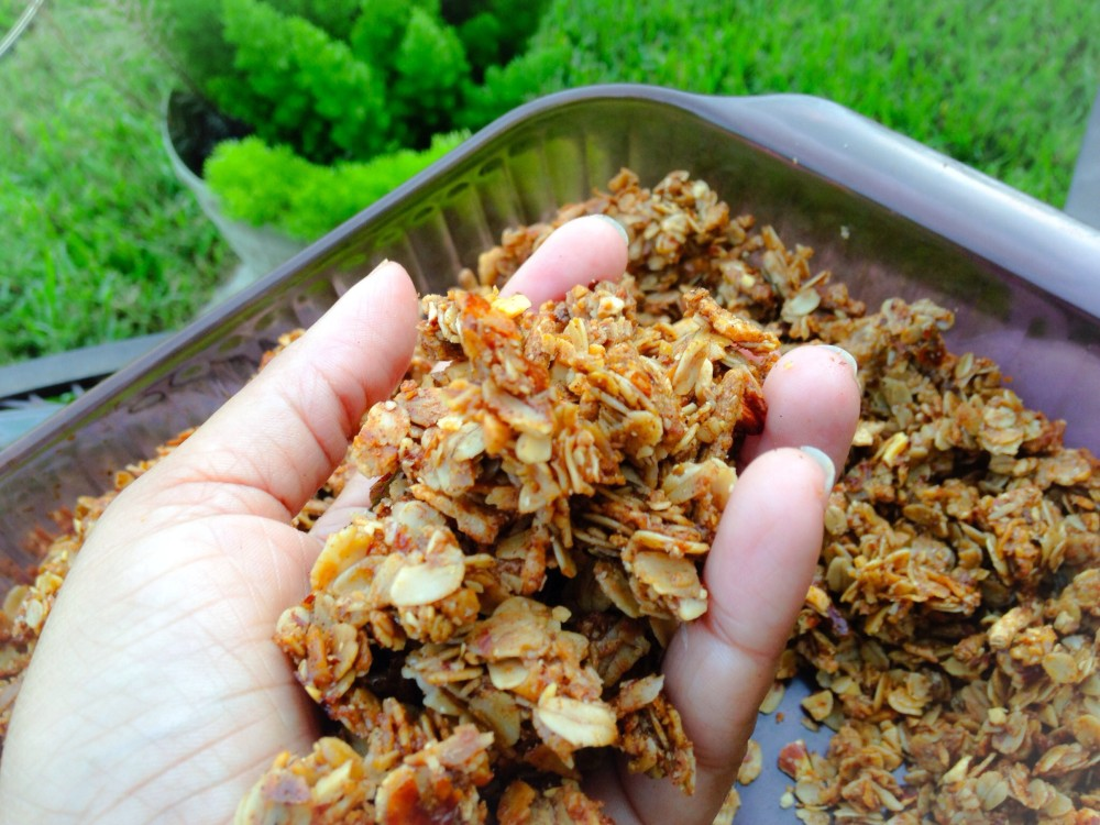 Easy Molasses and Nut Granola