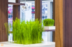 Detail from the interior - fresh wheatgrass emphasises the healthy eating aspect