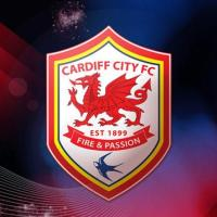The Red Dragon Will Lead The Way: Cardiff City Football Club Celebrate Their Record Premier League Promotion In Style!