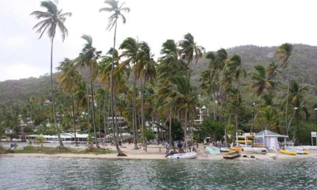 St. Lucia: Mangofight & Karibik Feeling pur!