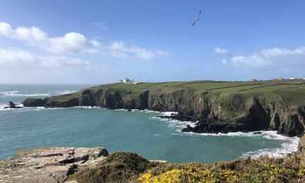 Warum Cornwall im März seinen Charme hat!
