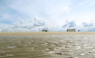 strandroemoe2