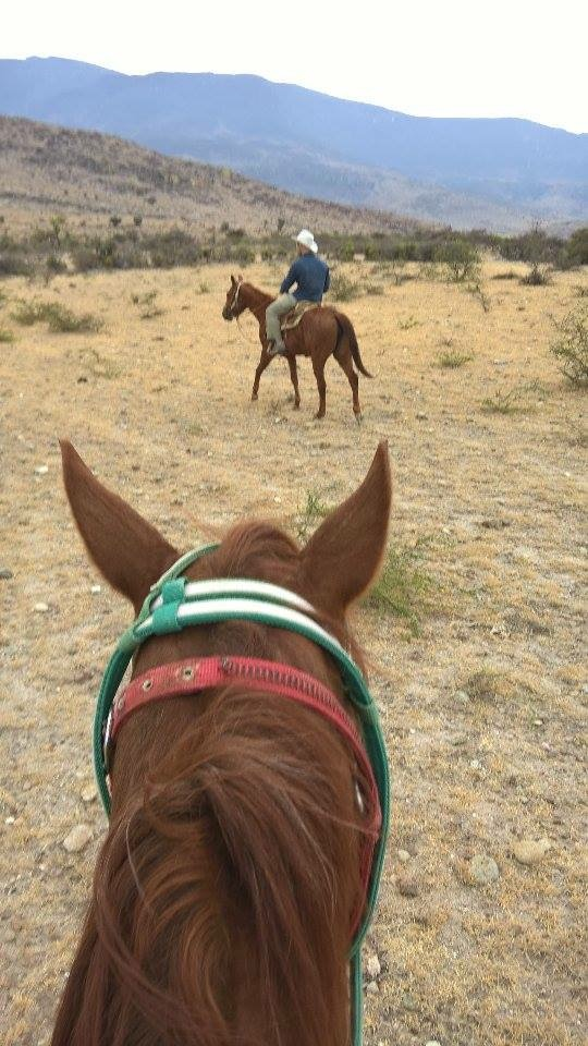 Horseback Vacation In Mexico