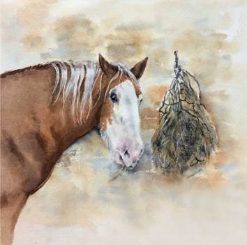 Horse with Haynet