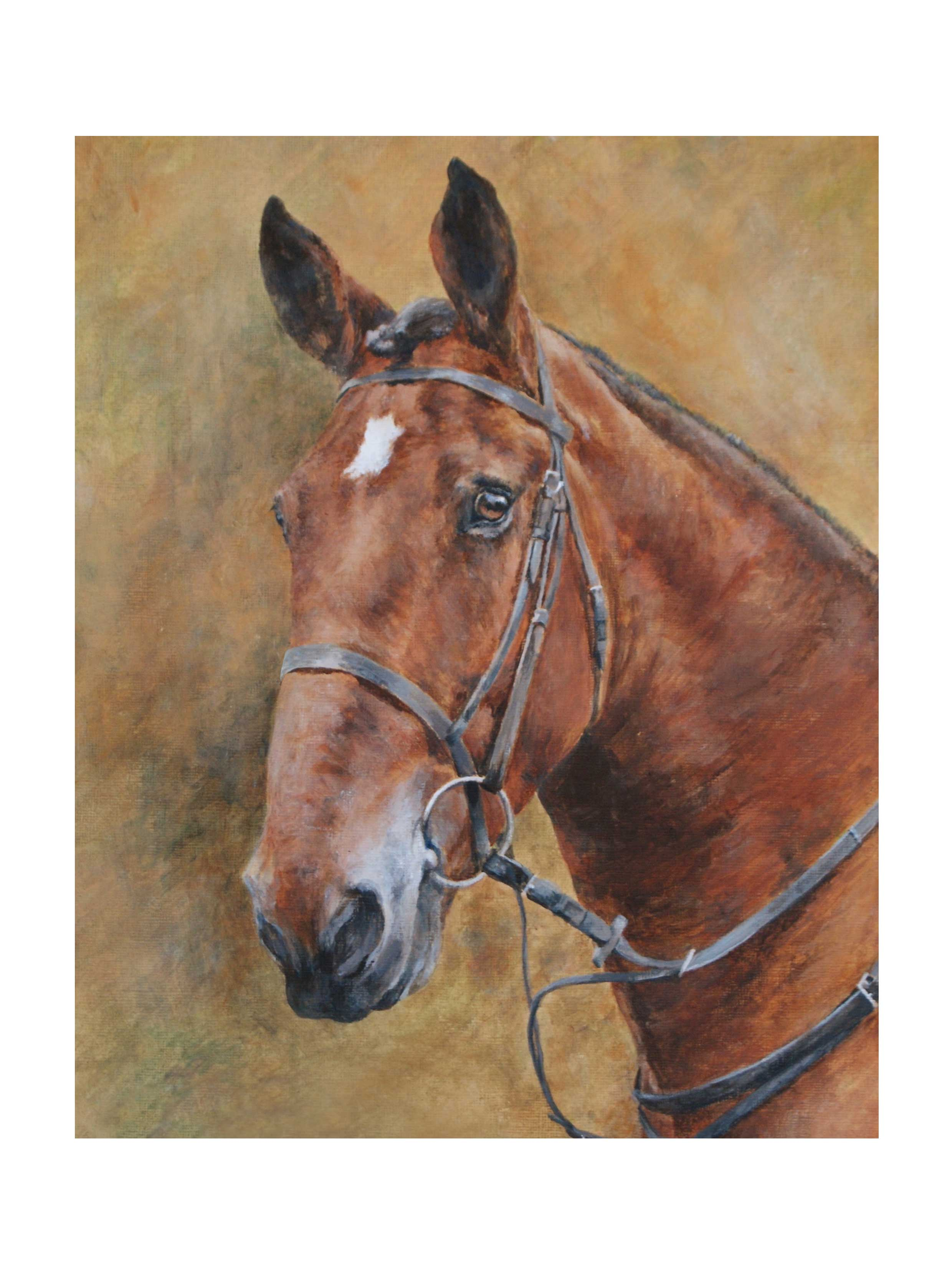 Horse head in Pastel