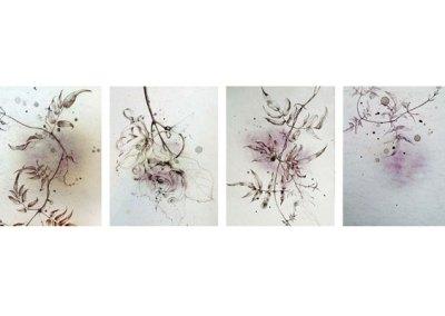 Bruise Drawings
