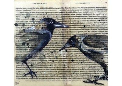Falling Crows Book