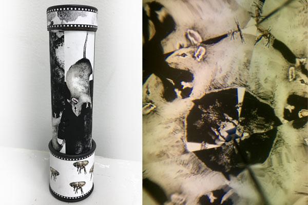 Plague Kaleidescope