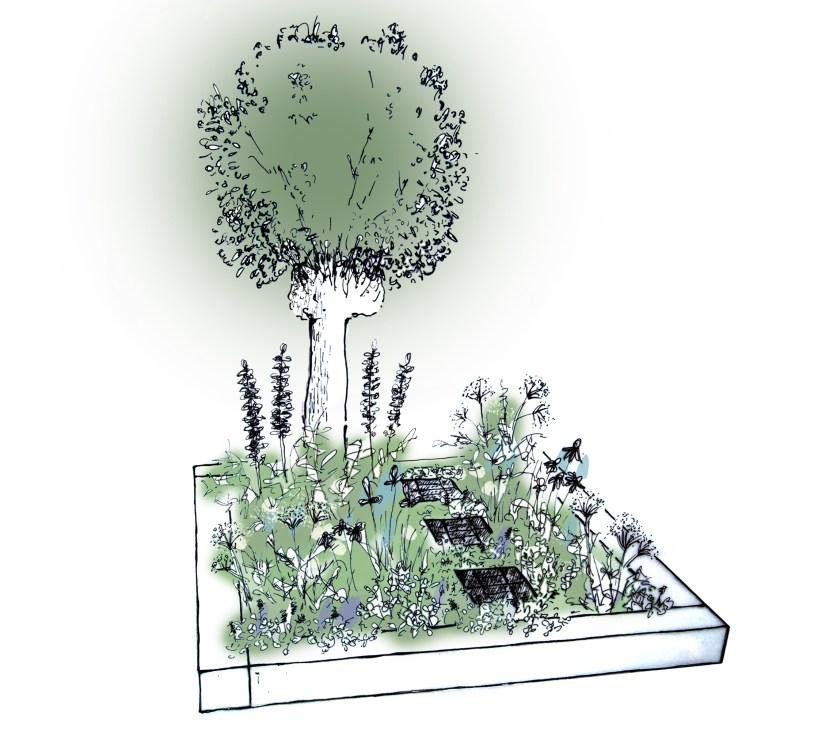 gardeners world design