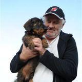 Zachránen∞ pes z priepasti v Spiτskej Teplici