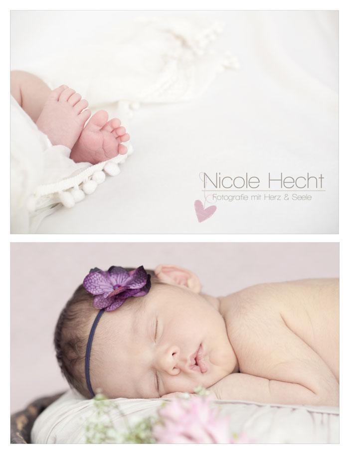 Neugeborenenshooting  Luica Marie  Babyhomestory
