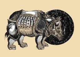Dürer Rhino