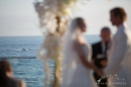 weddings in laguna beach surf and sand resort by nicole caldwell photo23