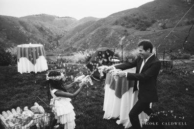 mailbu-wedding-by-nicole-calwell-17