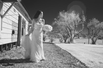santa-margarita-ranch-wedding-barn-nicole-caldwell-photography016