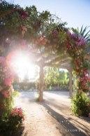 wedding_santa_barbara_historical_museum_nicole_caldwell_photo_studio14