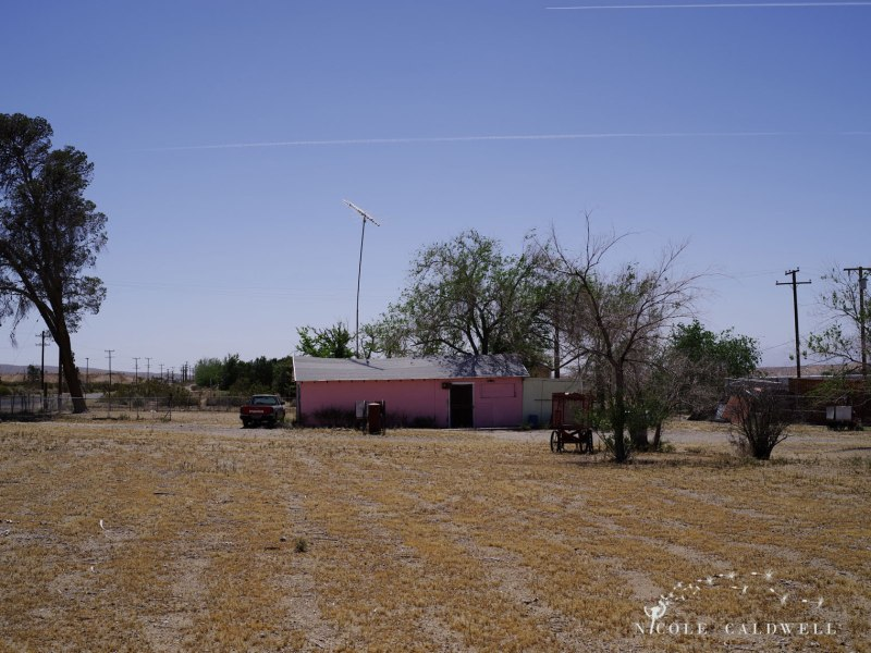 pentax-645z-at-Elmers-Bottle-Tree-Ranch-route-66-12