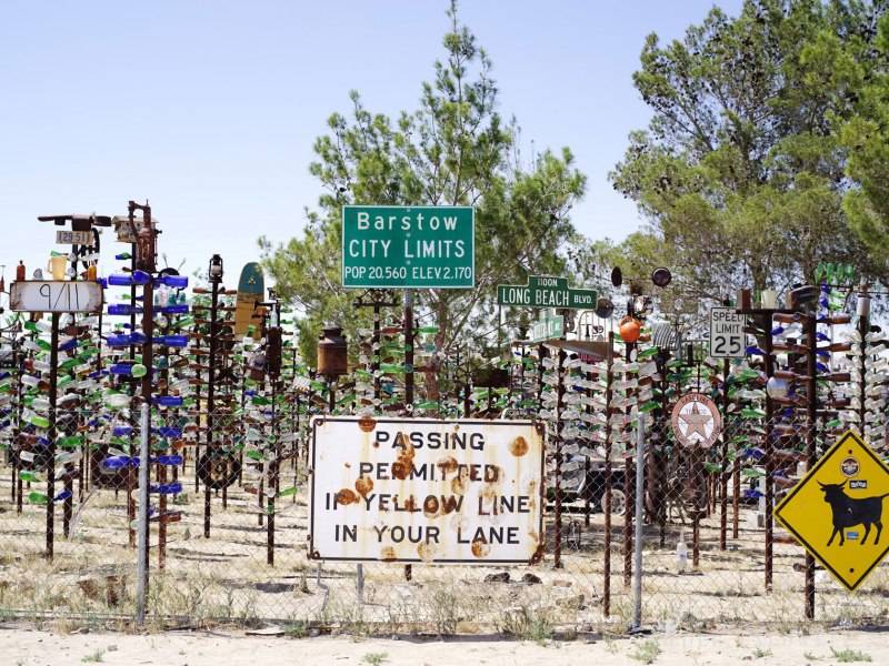 pentax-645z-at-Elmers-Bottle-Tree-Ranch-route-66-31
