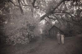 temecula creek inn weddings nightime ceremony jewish 17