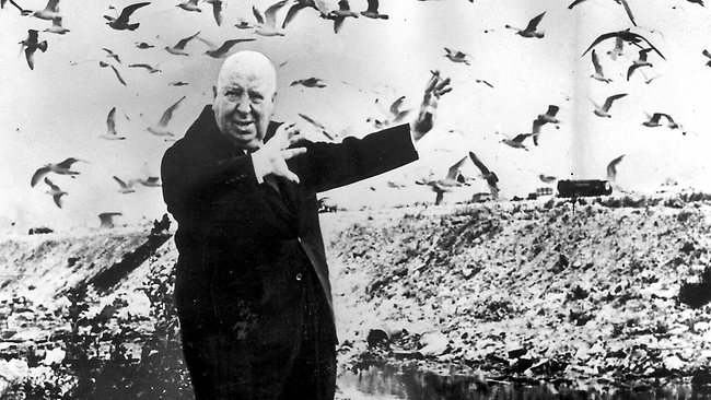 362872-120102-alfred-hitchcock